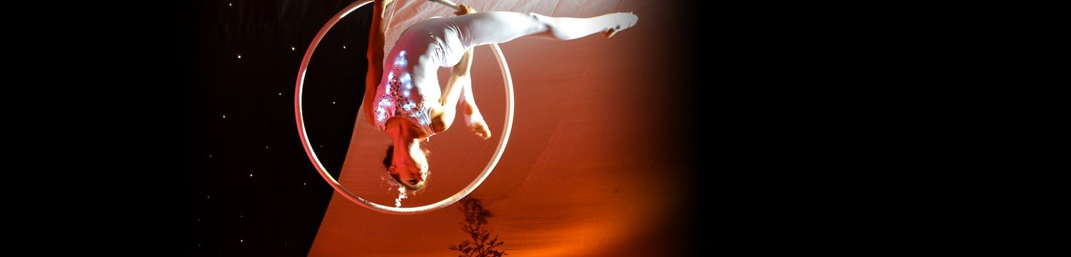 aerial hoop displays circus performer london