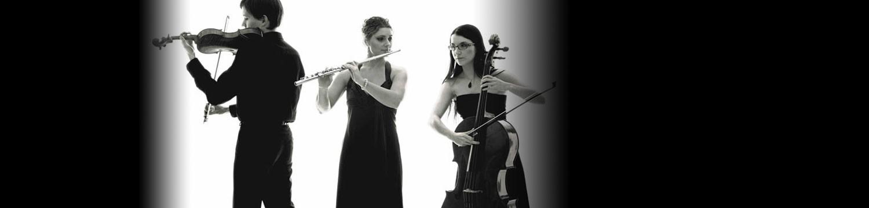 amici consort flute and cello duo/trio london