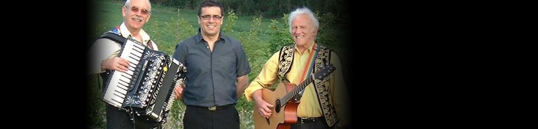 hazelwood irish / folk band hampshire