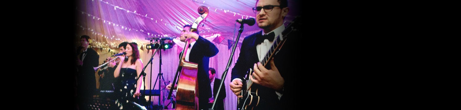 the doodlebugs rock n roll swing band london