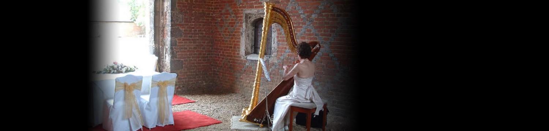 artists similar to acf harp