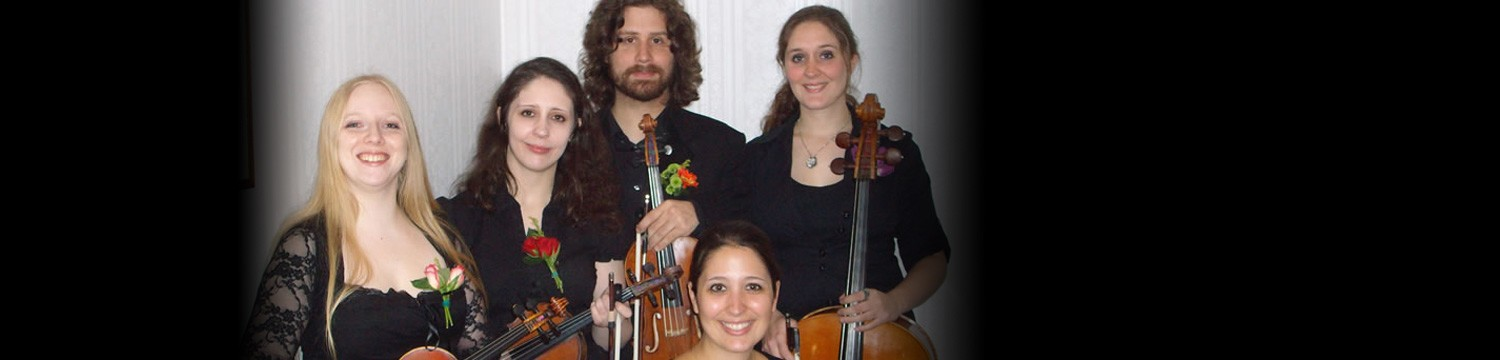 adelaide quartet string quartet surrey