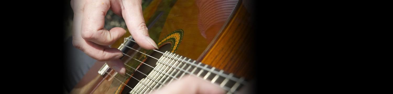 alex lloyd williams classical guitarist staffordshire