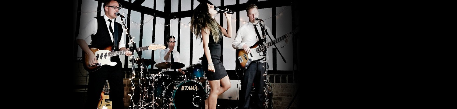 artists similar to blame it on the boogie