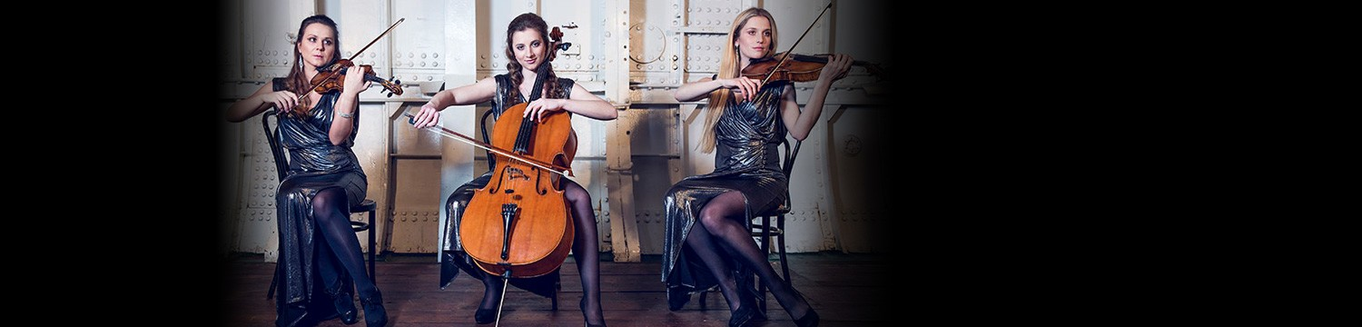 garden string quartet string quartet london
