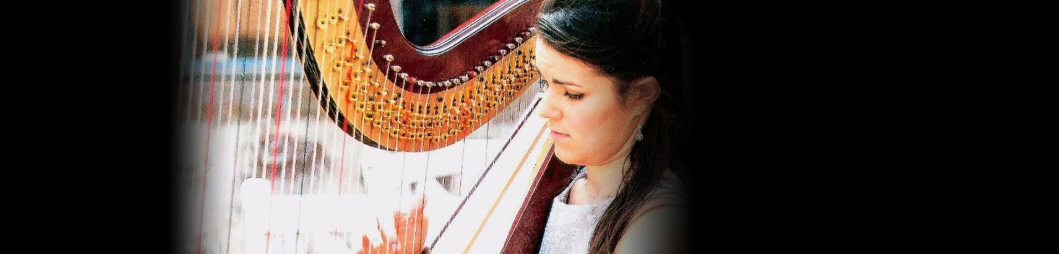 artists similar to the cardiff harpist