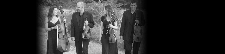 worcester string quartet string quartet worcestershire