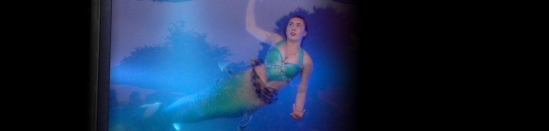 artists similar to magical mermaids