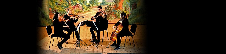 artists similar to metropolitan strings