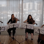 Video Southern Strings String Quartet Hampshire