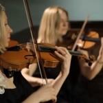 Video The Rose String Quartet String Quartet Hertfordshire